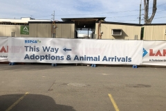 signage-this-way-adoption-of-animals-and-arrivals_900